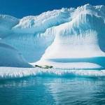 Antatikadaki Buzullar Dört (4) Kat Daha Hızlı Eriyor