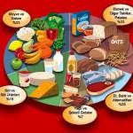 Beslenme Grupları ve Kalori Miktarları