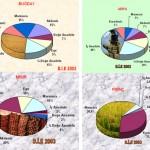 Bölgelere Göre Yetişen Tarım Ürünleri Nelerdir?