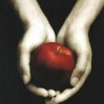 Stephenie Meyer – Alacakaranlık (Twilight) Kitap Özeti ve Konusu