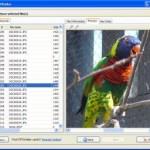 NTFSWalker 2009 İndir