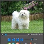 FLVPlayer4Free 3.8.0.0 İndir