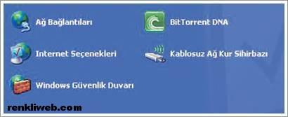 DNS Ayarları 1