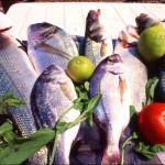 Hamilelikte Büyük Balık Yemekten Kaçının
