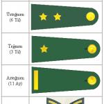 Askeri Rütbe Sıralaması (Resimli)