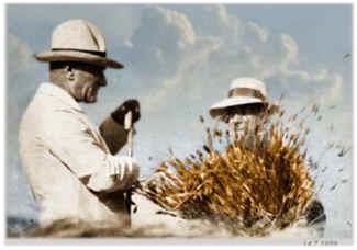 ataturk tarım