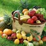 Bütün Meyvelerin Faydaları Nelerdir?