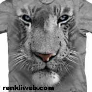 3D Tişörtler 2