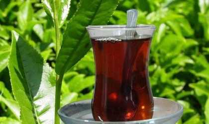 Günde Kaç Bardak Çay İçmek Gerekir? Çay İçme Zamanı