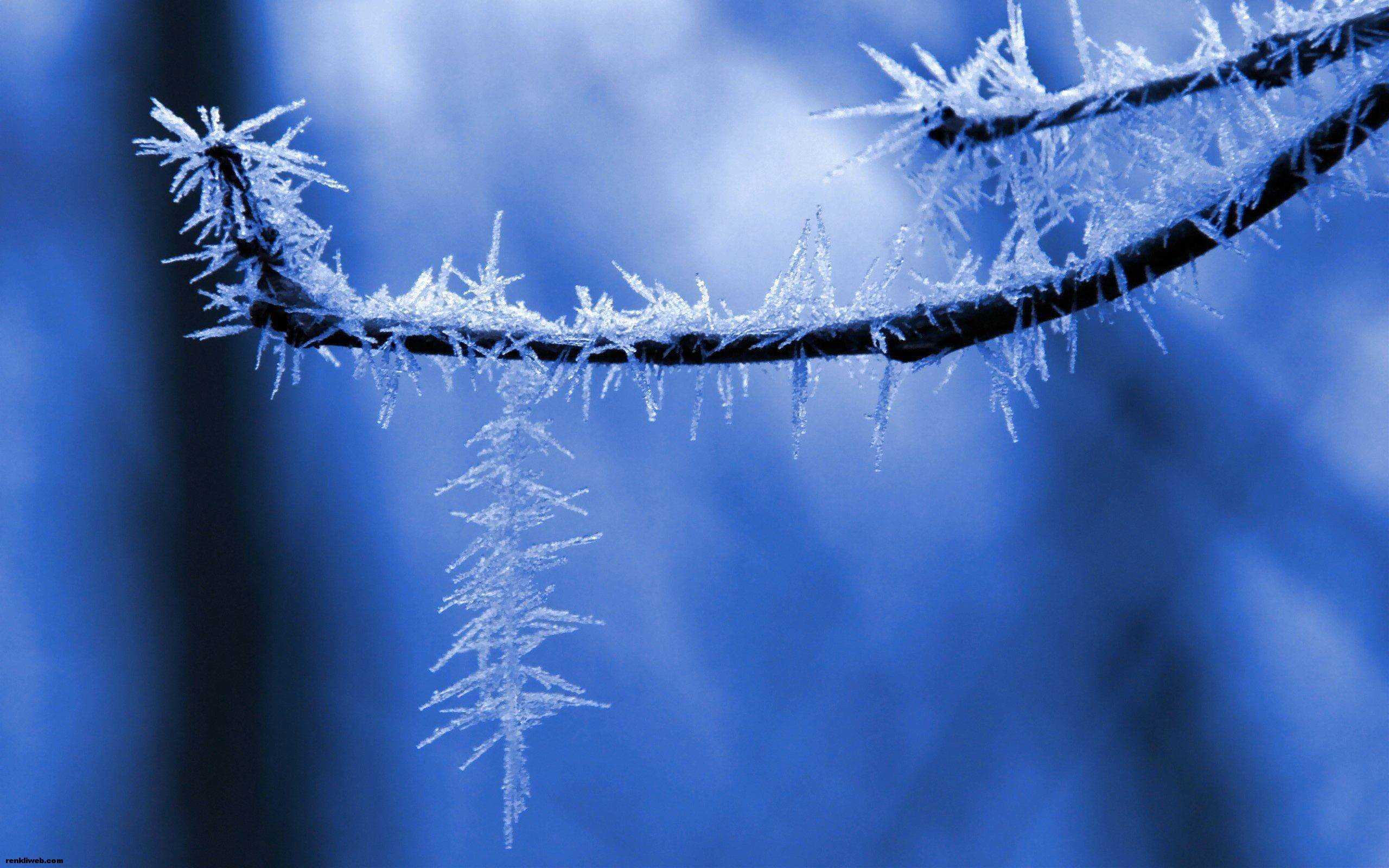 kış ve kar manzaraları 002