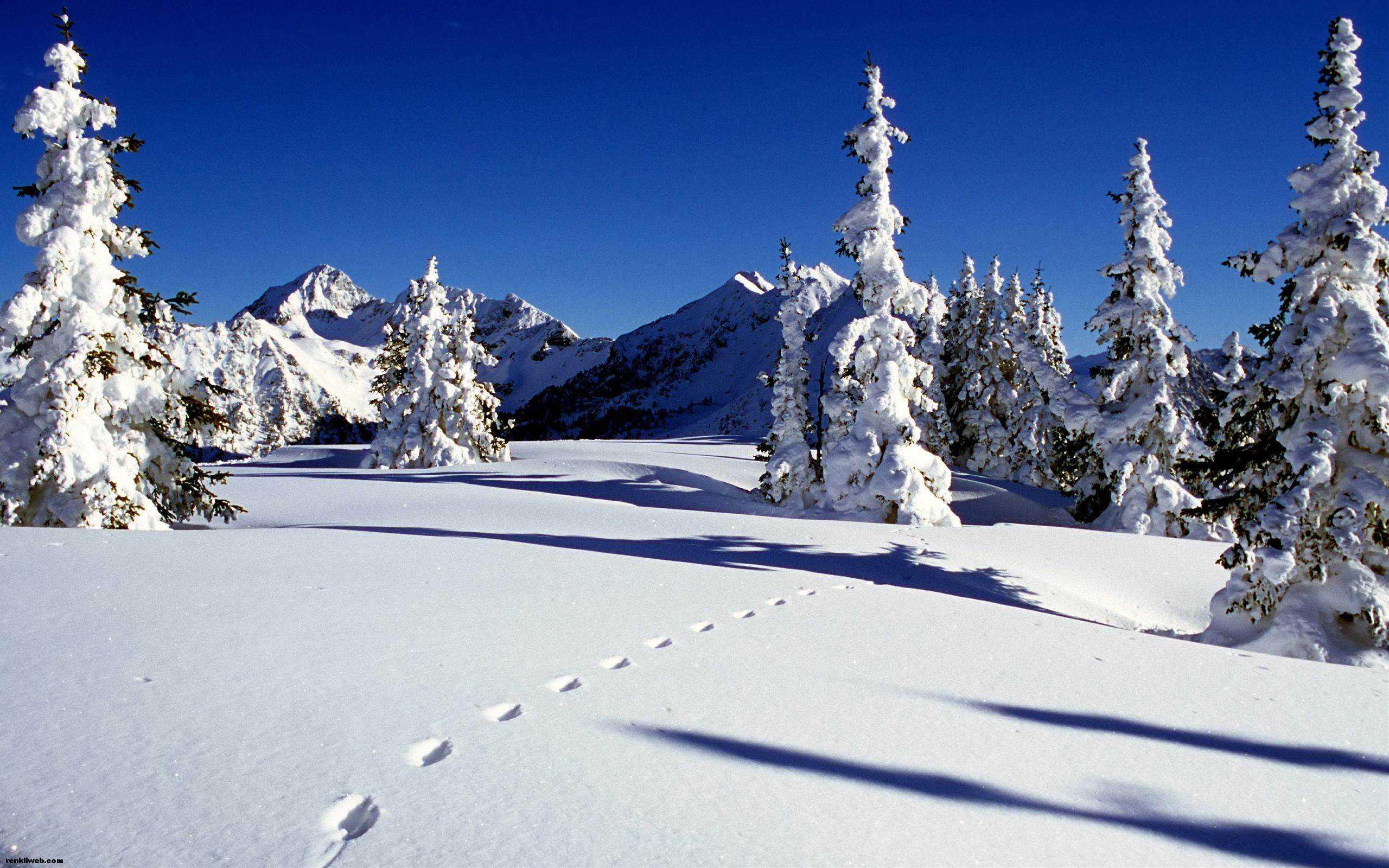 kış ve kar manzaraları 006
