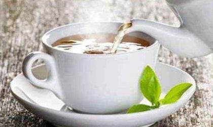 Yağ Yakan ve Zayıflatan Bitki Çayları – 20 Çay (Bilimsel Araştırma)