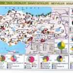 Türkiye'nin Meyve Haritası