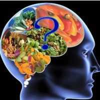 Beyni Gençleştiren Besinler