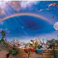 Gemi icadı ve gelişimi nasıldır? Kısaca geminin icadı