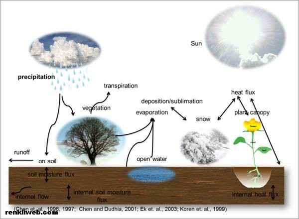 Water cycle Processes - su döngüsü aşamaları