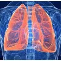 Akciğer nasıl temizlenir? Akciğer temizliği nasıl yapılır?