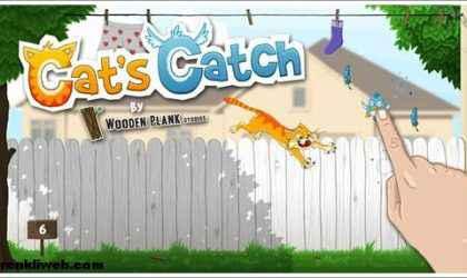 Windows 8 İçin Kedi-Kuş Av Oyunu – Cat's Catch