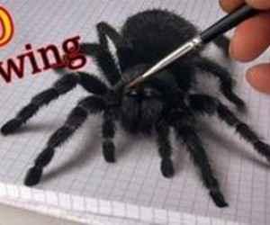 Üç Boyutlu 3D Örümcek Çizimi (Videolu Anlatım)