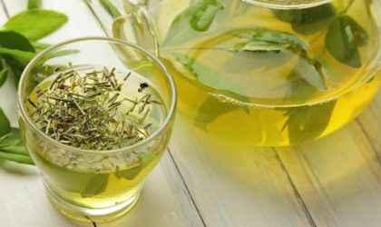 Yeşil Çayın Faydaları Bilimsel Olarak Kanıtlandı!