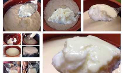 Evde Doğal Yoğurt Mayası Nasıl Yapılır? (Resimli Anlatım)