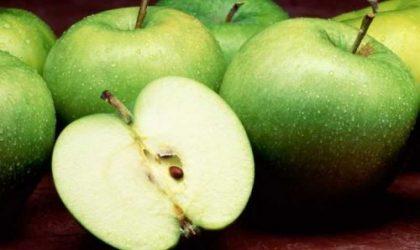 Elmanın Zararları Nelerdir?