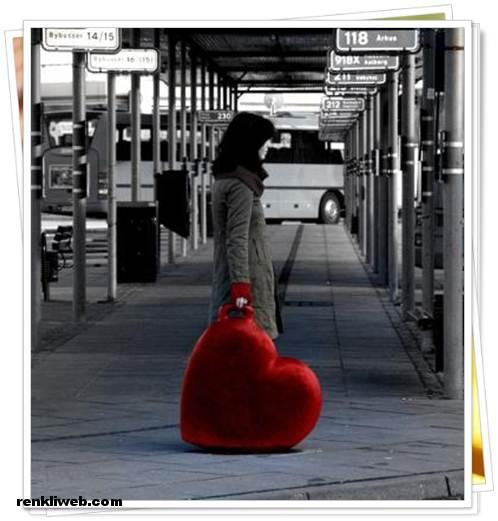 Aşk Fotoğrafları 16
