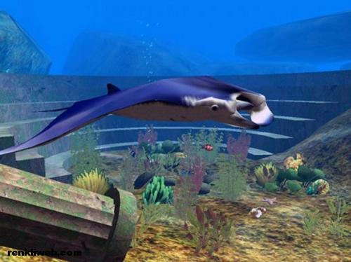 Atlantis, 3D, Ekran Koruyucu