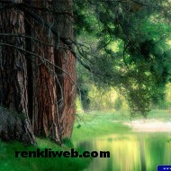 Doğa Resimleri 001