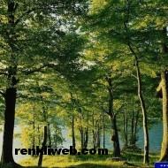 Doğa Resimleri 012