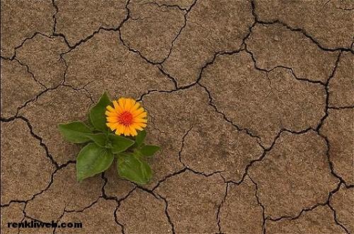 Erozyon, toprak, tarım, yaşam