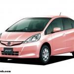 Kırışıklıklardan Koruyan Otomobil – Honda Fit She's