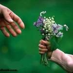 Sevgi ve Saygı İle İlgili Şiirler