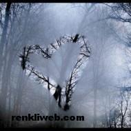 aşk resimleri 014