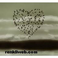 aşk resimleri 024