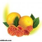 Altın Çilek Meyvesi Faydaları ve Kullanımı