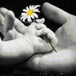 Anneler Günü Şiirleri – En Güzel Anne Şiirleri