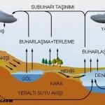 Su buharı yoğuşunca hangi doğa olayları meydana gelir?
