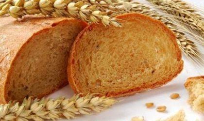 Beyaz Ekmek Yerine Tam Buğday Ekmeği Mi Yemeli? (Bilimsel Araştırma)