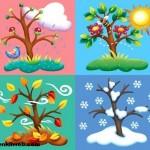 4 Mevsimi Yaşayan Ülkeler Hangileridir?