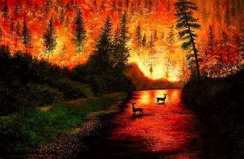 orman, ağaç, yangın