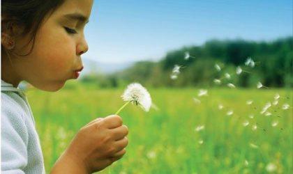 Rinit Alerji (Saman Nezlesi) Nedir? Nedenleri, Belirtileri ve Tedavisi