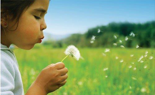 polen, alerji, hastalık, tedavi