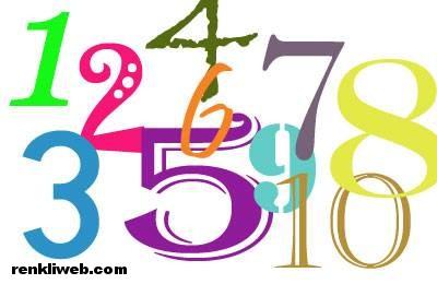 sayılar - rakamlar