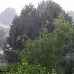 Yağmur Nedir? Yağmur Eş Anlamlısı